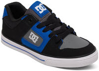 DC Shoes Pure Kids Skate Shoes